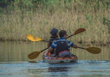RECORD SEASON IN THE NATIONAL PARK SKADAR LAKE IN THE LAST TEN YEARS